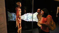 TFI Body Worlds- Animal Inside Out Members Premiere (122) (The Franklin Institute Science Museum) Tags: bodyworlds franklininstitute plastination animalinsideoutexhibit
