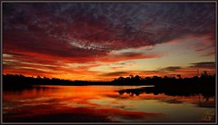 Reflected in (WanaM3) Tags: park morning trees red sky seascape reflection nature water clouds sunrise landscape outdoors texas sony ngc bayou pasadena canoeing paddling a77 bayareapark clearlakecity redskyinthemorning armandbayou sonya77 wanam3