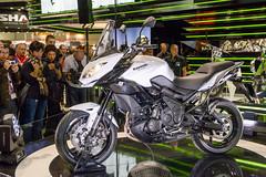 Kawasaki Versys 650, 8