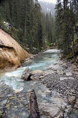 Down River (JB by the Sea) Tags: canada rockies alberta banff rockymountains banffnationalpark canadianrockies johnstoncanyon johnstontrail johnstonfalls september2014