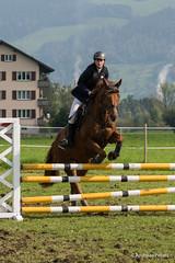DSC05982_s (AndiP66) Tags: horse oktober macro sports sport schweiz switzerland mark sony luzern sp ii di if alpha tamron concours 77 pferd 70200 equestrian derby f28 ld horsejumping 70200mm wettbewerb 2014 springen eschenbach kantonsolothurn inwil reithof springreiten cantonsolothurn stleodegar wolhusen andreaspeters pferdespringen grueb martinameyer 77m2 a77ii ilca77m2 77ii slta77ii