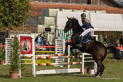 DSC05970_s (AndiP66) Tags: horse oktober macro sports sport schweiz switzerland mark sony luzern sp ii di if alpha tamron concours 77 pferd 70200 equestrian derby f28 ld horsejumping 70200mm wettbewerb 2014 springen eschenbach kantonsolothurn inwil reithof springreiten cantonsolothurn stleodegar andreaspeters pferdespringen 77m2 a77ii ilca77m2 77ii slta77ii