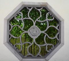 Oriental Window (pjpink) Tags: summer museum washingtondc dc washington arboretum september bonsai 2014 nationalarboretum penjing pjpink