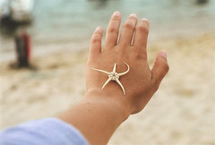 lembranças da ilha (patinspirations) Tags: starfish summertime island film 35mm ilhadofarol algarve canonae1 hand
