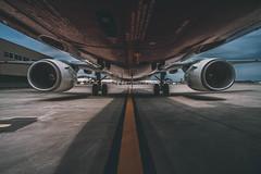 MACHINE ll (R*Wozniak) Tags: boeing norwegianairshuttle 737 color nikond750 nikon 20mm contrast