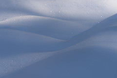 Winter subtleties (George Pancescu) Tags: nikon d810 70200mm snow abstract winter white blue cold dune light shadows nature natural outdoor
