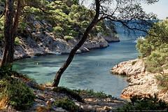 Paysage des Calanques (annececileclubfoto) Tags: calanquesdecassis cassis marseille provence bouchesdurhone mediterranee mer littoral paysage landscape nature ete vacances