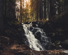 Spring (JH') Tags: nikon nikond5300 nature d5300 water waterfall wideangel wood rocks rock trees tree photoshoot photography sky sigma sweden spring forest green landscape longexposure exposure colors beautiful naturephotograph 2017 sun sunlight