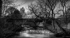 B&W (Ajnaraja) Tags: river oslo nd filter longexposure bw tree bridge bracketing hdr 1000x