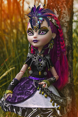 Mira (Lady Barbarella) Tags: ever after high dragon games mira shards custom version basic dollsphotography restyled repaint