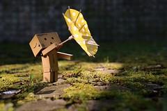 Stürmische Zeiten (fotospoekes) Tags: danbo revoltech schirm gelb sturm stürmisch wetter weather fotospoekes fun toy figure outside green
