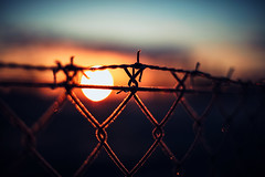 Catch the Sunrise (ewitsoe) Tags: hff happyfencefriday fence friday chickenwire sunrise sun dawn frost ice erikwitsoe ewitsoe canon eos5ds bokeh bokehball orb wire barbwire catch caught poland wlodawa eastern spring morning early out cold freeze frozen sky