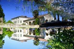 Upsidedown (martinasirena) Tags: reflections upsidedown water veneto italy spring garden