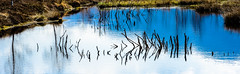 Colour Painting (*Capture the Moment* (OFF till End June)) Tags: 2017 bavaria bayern clouds elemente farbdominanz filzn fotowalk germany himmel matthias natur nature reflection reflections reflexion sky sonya7m2 sonya7mii sonya7mark2 sonya7ii sonyfe2890macrogoss sonyilce7m2 wasser water wolken blau blue cloudy