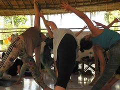 The Yoga People   Yoga Teacher Training Programs