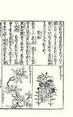 Left – cape-jessamine; Right – China pink (Japanese Flower and Bird Art) Tags: flower capejessamine gardenia jasminoides rubiaceae china pink dianthus chinensis caryophyllaceae moriatsu hayashi kano woodblock picture book japan japanese art readercollection