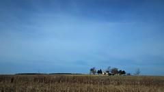 Rural Illinois (michael.veltman) Tags: rural illinois countryside blue sky home on the range trees