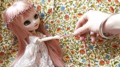Spring time ! (Shamujinn) Tags: pullip doll poupée main hand groove fc full custo custom customisation siamoise siamese shamujinn dentelle robe dress fleur flower gold or motif bracelet couronne crown serenity