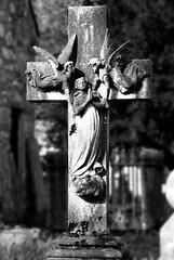 angels (Lord Edam) Tags: river afon llugwy conwy wildlife morning water rocks fields grave gravestone church churchyard statue