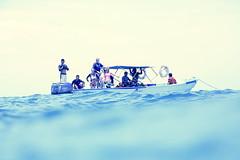 Hunt (with cameras) for the Dugongs (Landersz) Tags: philippines filippine coron palawan club paradise snorkeling turtle shark clownfish nemo dugong landersz canon 5dmk3 nimar gopro hero5