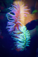 Sea Anemone (Bucky-D) Tags: vancouverinternationalairport watercolor seaanemone aquarium topazsimplify art yvr topaz richmond britishcolumbia canada ca