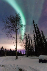 North Pole Aurora (sohiroshi) Tags: northernlights aurora polarlights canon 6d 1740 alaska northpole