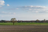 _K209152 (Norbert Osiecki) Tags: pentax k20d landscape 50mm