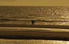 Belgian coast (Natali Antonovich) Tags: belgiancoast seasideresort seaside seashore seaboard sea northsea horizon landscape nature reflection water silhouette lifestyle walking walk belgium belgie belgique wenduine