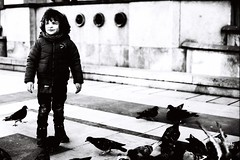 Ryan (Gwenaël Piaser) Tags: washi films washifilms 50asa 50iso soundrecordingfilms blackandwhite monochrome wb nb bw noiretblanc orthochromatic orthochromatique film analog filmssoundrecordingfilm washifilmssoundrecordingfilm pigeons city ville paris march 2017 mars march2017 ryan child enfant toddler 85mm 85mmf18 canonef85mmf18usm ef85mmf18usm ef85mm usm ef85mmusm canonef85mm118usm prime unlimitedphotos gwenaelpiaser canon eos canoneos eos3 canoneos3 캐논eos3 reflex photography argentique 135 24x36 fullframe trocadero portrait 2500