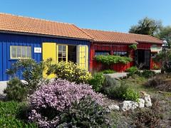 Les cabanes colorées  (Château d'Oléron, Charente-Maritime, France) (frecari) Tags: france charentemaritime oleron ile 2017 cabanes
