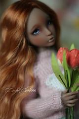 IMG_5739 (Cleo6666) Tags: lana lillycat cerisedolls marron glacé bjd doll chibbi