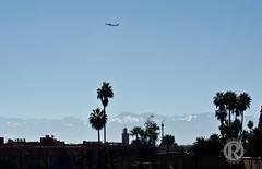 Ove_Marokko3 (overonning) Tags: marocco plane landscape mountains trees