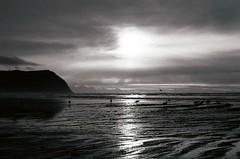 Seagulls Making Waves (Anne Abscission) Tags: seaside oregon oregoncoast seagulls gulls seabirds birds tillamookhead beach shore ocean water olympustrip olympustrip35 kodakbw400cn kodakprofessional bw400cn blackandwhite bw filmphotography analog 35mm 35mmfilm ishootfilm filmisnotdead pacificnorthwest pnw pacificocean compact35mm clouds