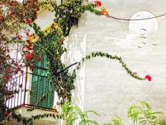 Andalucia balcony
