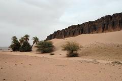 near Tata (markusOulehla) Tags: landscape nikon desert tata morocco habitat landschaft marokko herps wste erg 2014 sandwste nikonnature oulehla markusoulehla moroccanherping moroccanherpetofauna moroccananimals