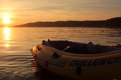 Schlauchboot - Gummiboot währen dem Sonnenuntergang - Sunset am Zürichsee bei Schmerikon im Kanton St. Gallen in der Schweiz (chrchr_75) Tags: chriguhurnibluemailch christoph hurni schweiz suisse switzerland svizzera suissa swiss chrchr chrchr75 chrigu chriguhurni 1409 september 2014 hurni140928 zürisee zürichsee see lac lake lago september2014 gummiboot gummiboote schlauchboot schlauchboote boot jolle dinghy boat jolla canot ディンギー sloep bote albumschlauchbootegummibooteunterwegsinderschweiz albumzürichsee sonnenuntergang sunset coucher du soleil zonsondergang tramonto 夕日 albumzzzz140928schlauchboottournäfelsschmerikon