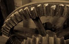 Holgate Windmill, September 2014 (21) (nican45) Tags: 1770 1770mm 1770mmf284dcmacro 600d bakeoff canon dslr eos600d festivaloffoodanddrink hwps holgatewindmill slr sigma york yorkshire cogs festival foodfestival gears machinery mill mono monochrome stonefloor stonesfloor windmill