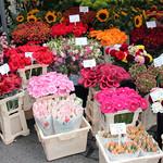 Bloemenmarkt thumbnail