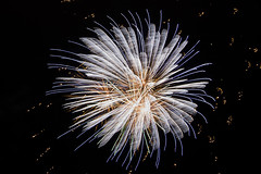 IMG_2996 (Inch Eyeland Images) Tags: beach nature bondi docks surf fireworks wildlife sydney bridges australia melbourne healesville bluemountains kangaroo perth koala greatoceanroad operahouse harbourbridge blackswan stkilda 12apostles coogee dandenongs healsville