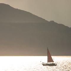 Red Square (prajpix) Tags: sea scotland boat yacht argyll transport backlit loch fyne tarbert