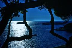 blue sea afternoon (paddy_bb) Tags: travel sea italy seascape evening coast sardinia 2013 nikond3100 sardinienitalien2013 paddybb