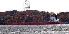 Eleni M (Jacques Trempe 2,400K hits - Merci-Thanks) Tags: river ship quebec stlawrence stlaurent eleni fleuve navire stefoy