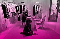 Modeling in Dior (Midnight and me) Tags: dog fashion miami smiles poodle midnight dior christiandior standardpoodle coutour balharbourshops blackstandardpoodle midnightandme littledoglaughedstories modelingindior smilingsalesman