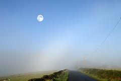 early morning fog (haywardk49) Tags: road morning sky moon mist west field grass fog wall fence early nikon bradford yorkshire leeds pole mm dslr distance tamron telegraph vc 18270 d3200 pzd 18270mm