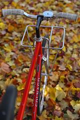 15514974505_9843928bbd_o (pilisiecki) Tags: handmade steel rack handcrafted custom stainless bicyclerack bespoke porteur filletbrazed frontrack pilisiecki
