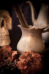 skull (catdamico) Tags: life old music stilllife white black flower colour detail tree history classic texture cup glass leaves photoshop vintage cards photography skull idea still lemon poetry poem seasons natural emotion notes time tea coins stamps year bricks watch feel egg memories belief objects scene fortune collection celebration note story nails fate destiny luck memory editorial chance horseshoe feeling textiles pocket shape filters catalogue tale impression collect props narrative origin styling opinion hourglass pocketwatch lightroom sense notion