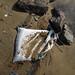 Trash on Pulau Ubin: Large sack