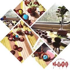 After a fantastic walk, I finished my cement-project & we created chestnut-figures. | Nach einem wunderbaren Spaziergang hab ich mein Zementprojekt beendet & wir haben Kastanien-Figuren gebaut.  #autumn #autumninlove #travel #travelblog #travelingram #tra
