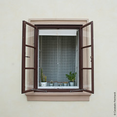 Ventana platnica (Caraballo Reinhardt) Tags: street window beauty nikon naturallight urbanism perfection decadence platonic