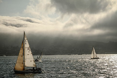 USA | Sailing Sausalito (Solomulala | mostly weekends ;-( !) Tags: california usa water boats sailing dramaticsky sausalito 2011 solomulala murielcdejong